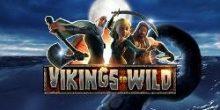 cum să faci bani online Vikings go Wild