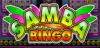 bani pe net Samba-bingo