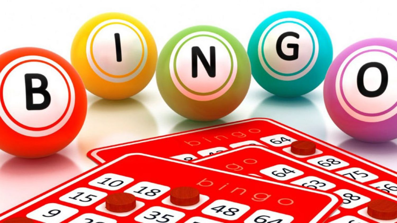 bingo online cu bani reali